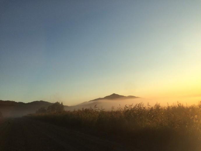 """Туманное утро на """"Остряках"""""""