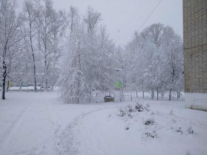 Зима 2018 - первый снег