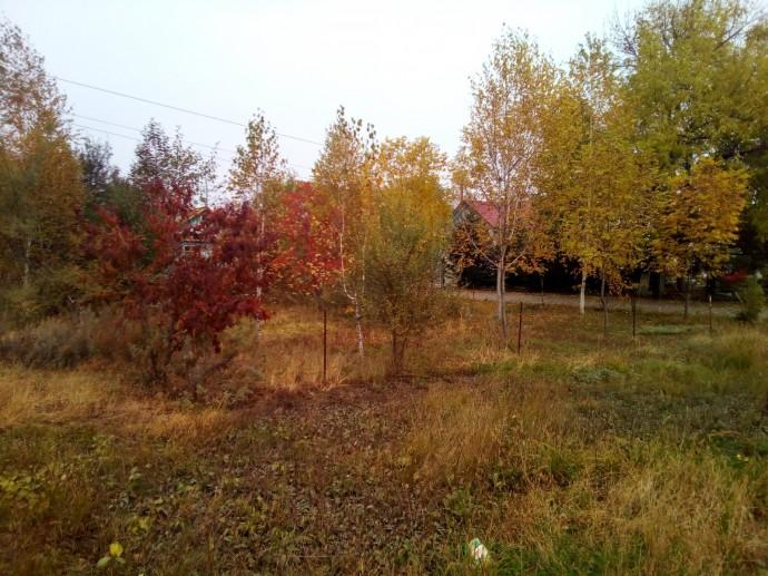 Осень в Амурзете