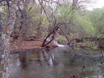 Река Манжурка